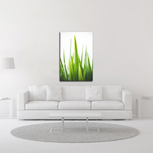 Blades of Green No. 1 by Sonja Quintero Wrapped Canvas Wall Art