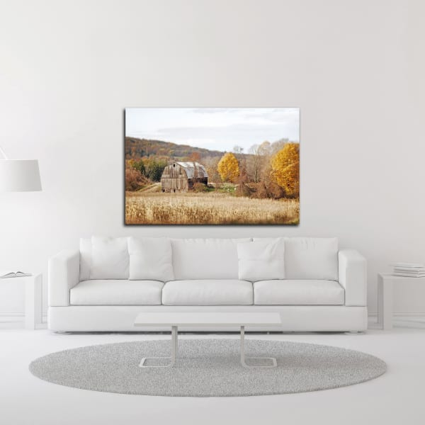 Barn and Beehives by Brooke T. Ryan Wrapped Canvas Wall Art