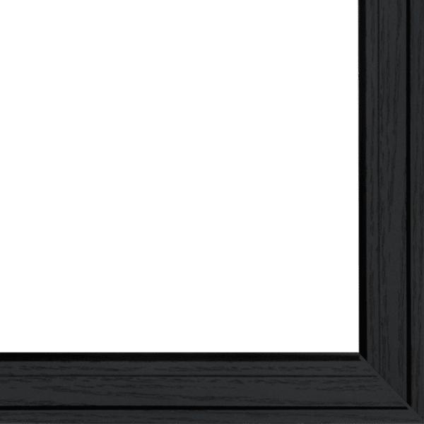 Blooms on Black 2-Piece Vignette by Lisa Morales Framed Wall Art