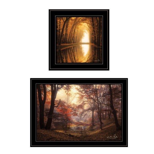 Nature's Reflections 2-Piece Vignette by Martin Podt Framed Wall Art