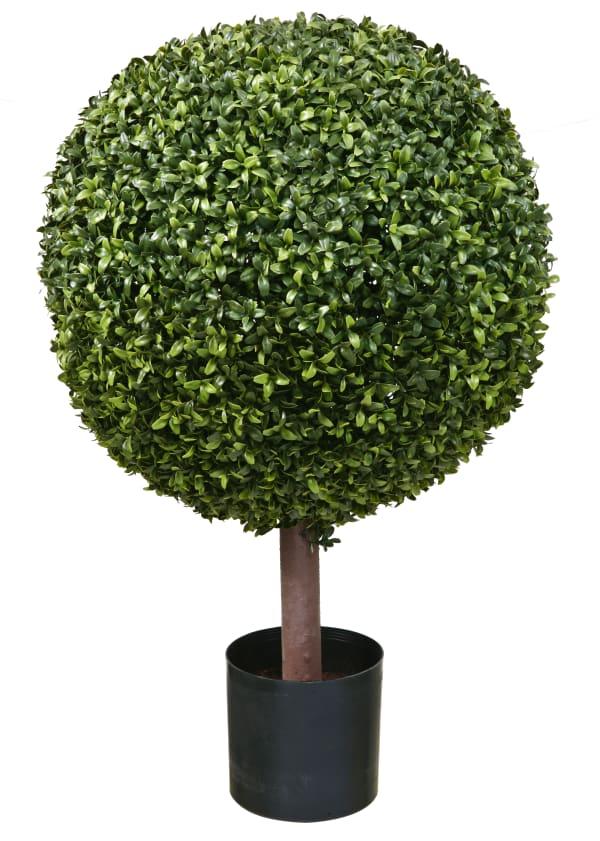 Boxwood Ball Topiary Tree