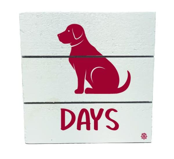 DOG DAYS OF SUMMER Wall Accent