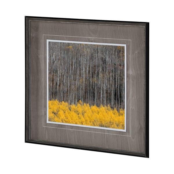 Aspen Trees 4 Wrapped Canvas Wall Art