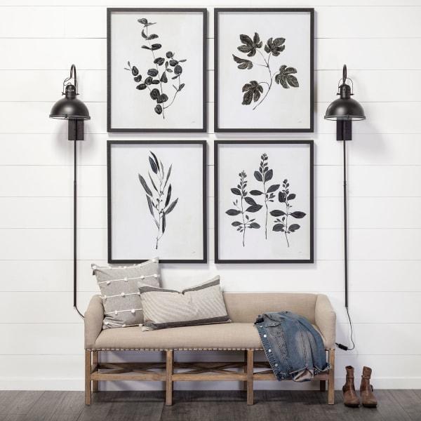 Botanical Study II Wrapped Canvas Wall Art