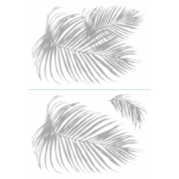 Palm Shadow Peel And Stick Giant Wall Decals