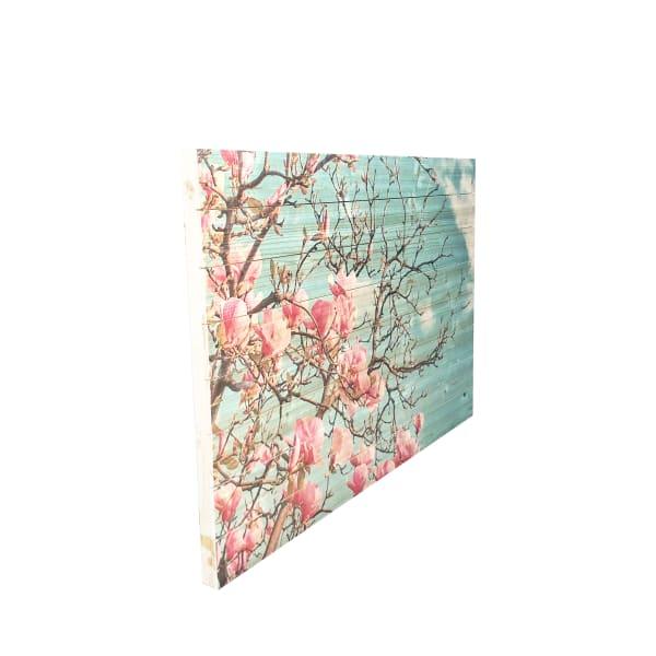 Magnolia Blossoms  Print on Wood Wall Art
