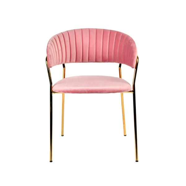 Fabric Upholstered Dining Chair with Metal Legs, Set of 2, Pink and Gold