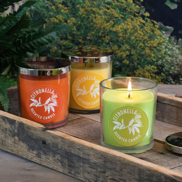 Citronella Set of 3 Scented Candles