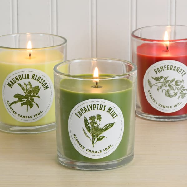 Botanical Scented Set of 3 Candle Collection