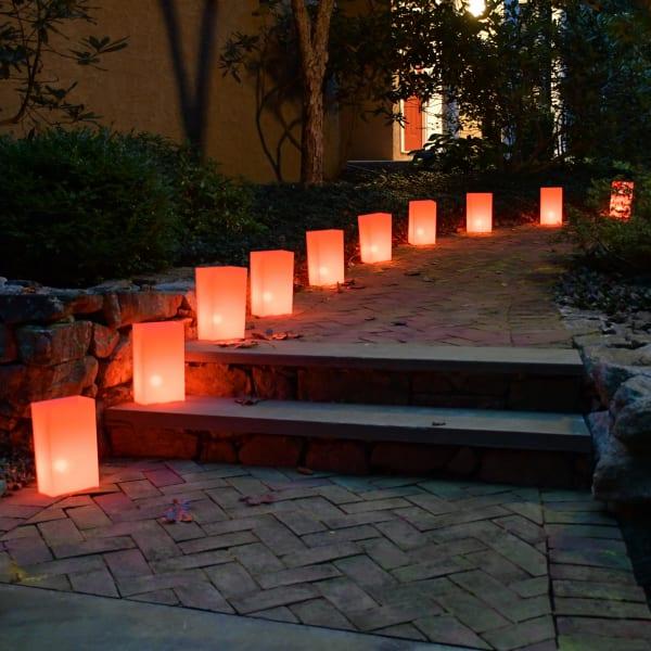 Electric Orange Set of 10 Luminaria Kits