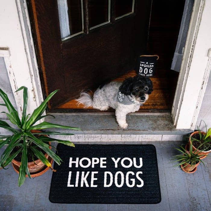 Like Dogs - Floor Mat