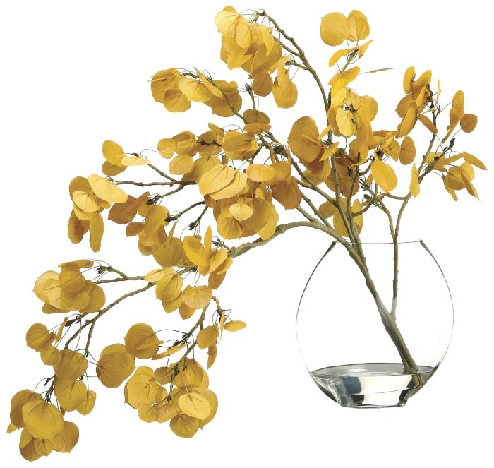 Aspen Leaf in Vase