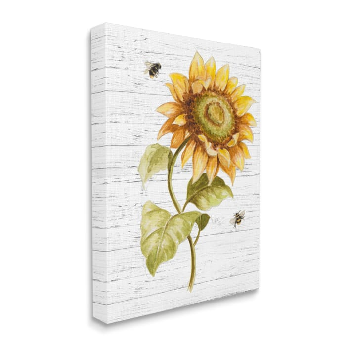 Rustic Sunflower Floral Roaming Honey Bee Insect Stretched Canvas Wall Art by Patricia Pinto 16 x 20
