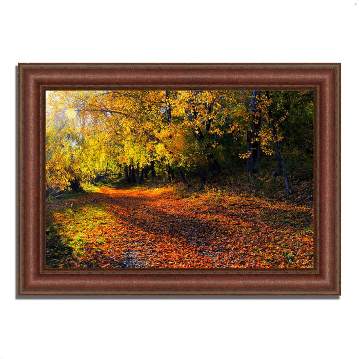 Framed Photograph Print 37 In. x 27 In. Auburn Trail Multi Color