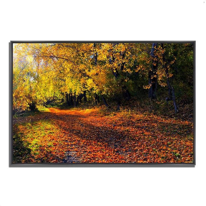Fine Art Giclee Print on Gallery Wrap Canvas 32 In. x 22 In. Auburn Trail Multi Color