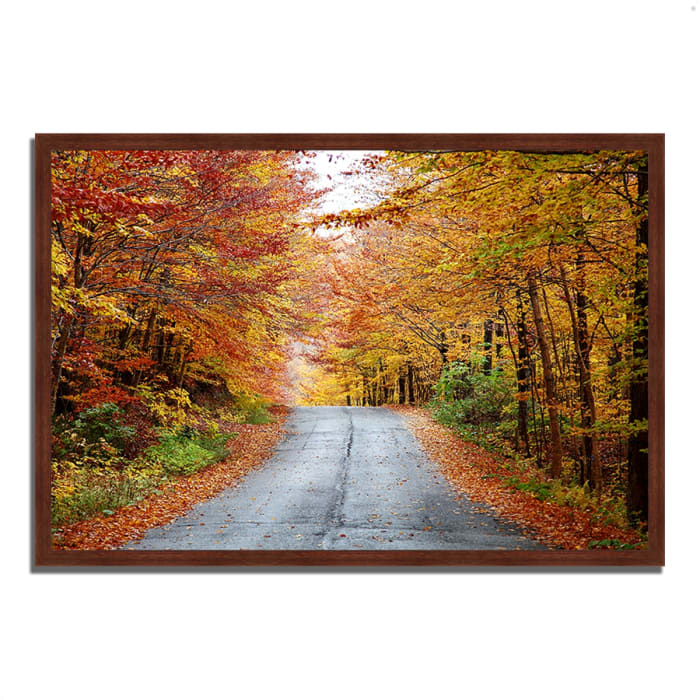 Framed Photograph Print 38 In. x 26 In. Autumn Afternoon Multi Color