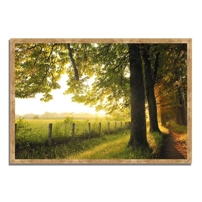 Framed Photograph Print 32 In. x 22 In. Fresh Morning Sun Multi Color