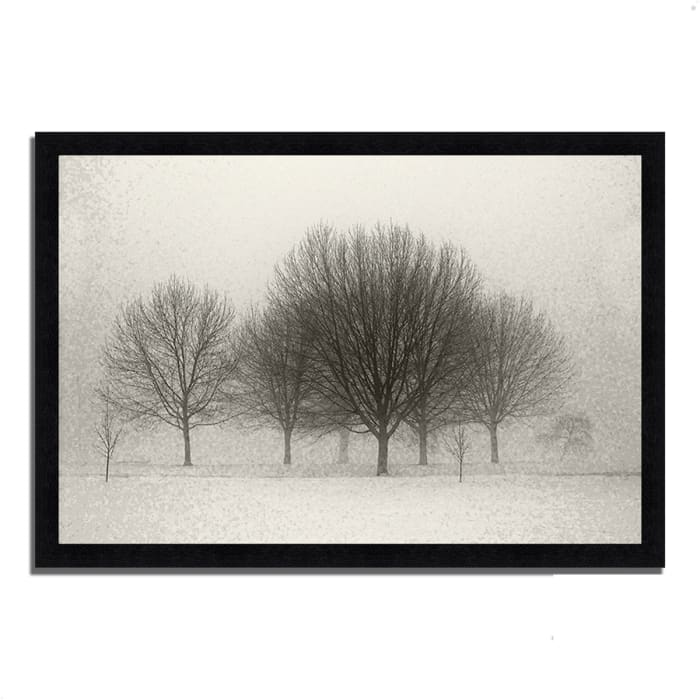Framed Photograph Print 39 In. x 27 In. Fading Memories Multi Color