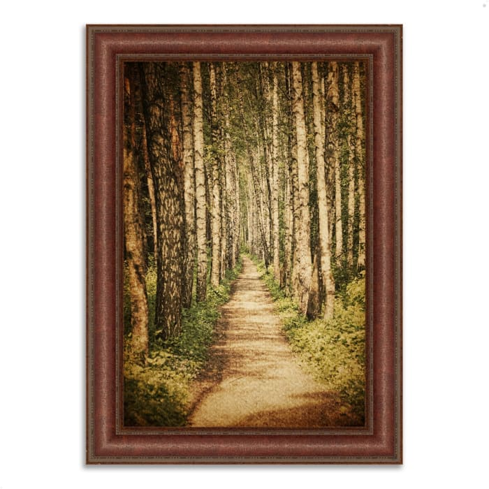 Framed Photograph Print 27 In. x 37 In. The Old Aspen Trail Multi Color