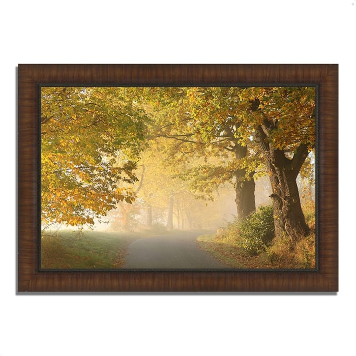 Framed Photograph Print 36 In. x 26 In. On A Misty Autumn Morning Multi Color