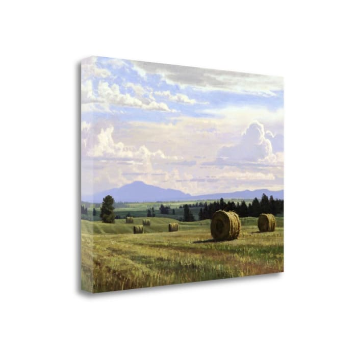 Fresh Cut Hay By Jay Moore Wrapped Canvas Wall Art