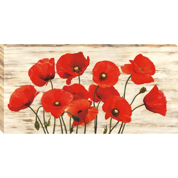 French Poppies By Serena Biffi Red Wrapped Canvas Wall Art