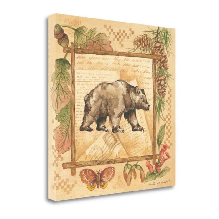 Bear By Anita Phillips Wrapped Canvas Wall Art