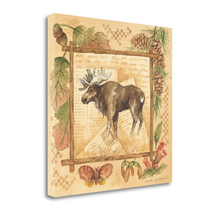 Moose By Anita Phillips Wrapped Canvas Wall Art