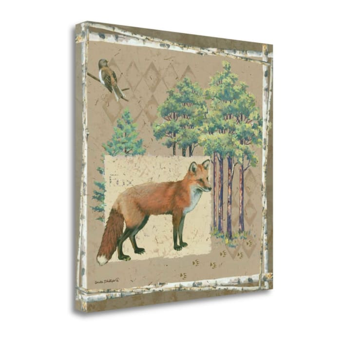 Fox By Anita Phillips Wrapped Canvas Wall Art