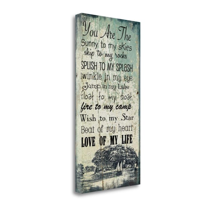 Lake And Love By Jo Moulton Wrapped Canvas Wall Art