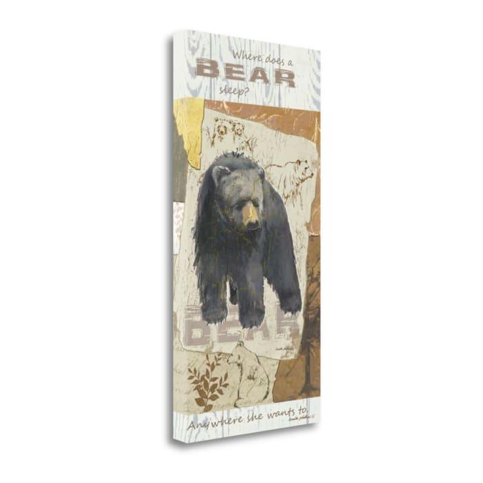 Bear Sleep By Anita Phillips Wrapped Canvas Wall Art