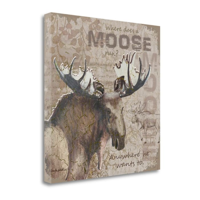 Where Does A Moose Run By Anita Phillips Wrapped Canvas Wall Art
