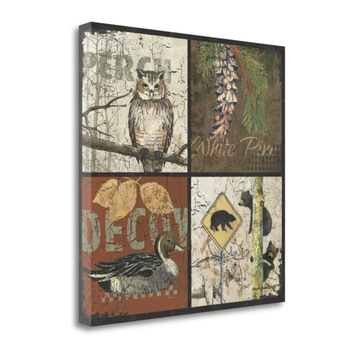Decoy By Anita Phillips Wrapped Canvas Wall Art