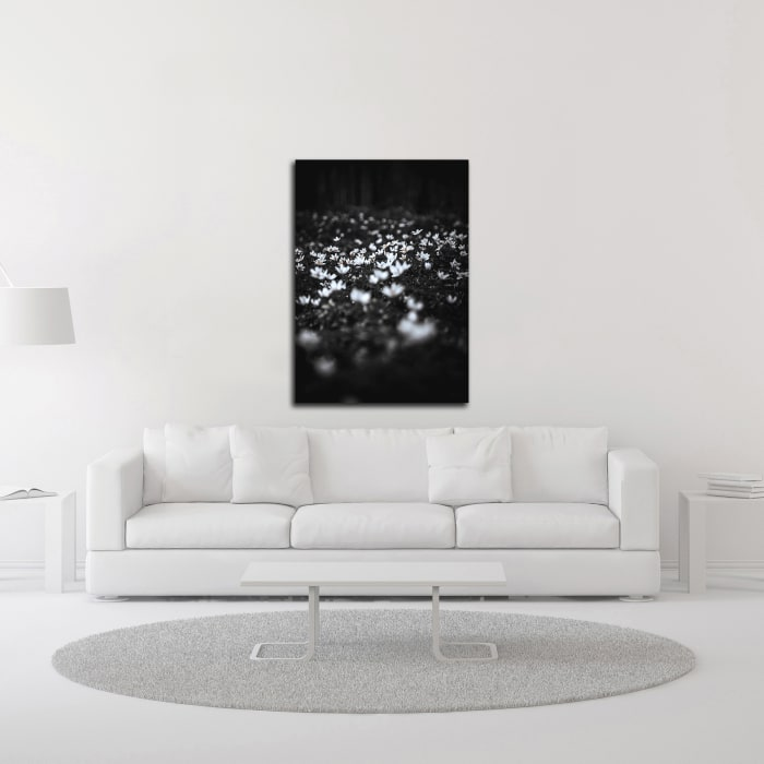 Windflowers by Design Fabrikken Wrapped Canvas Wall Art