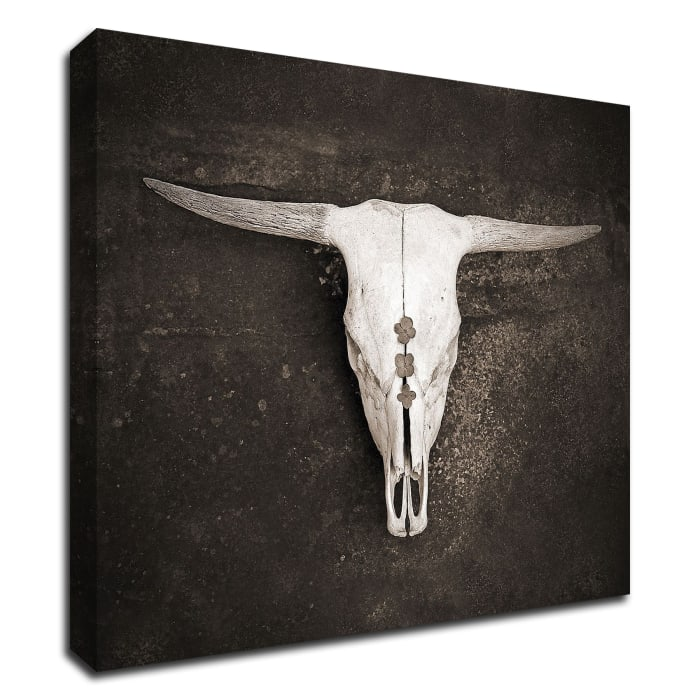 Sepia Cattle Skull by Brooke T. Ryan Wrapped Canvas Wall Art