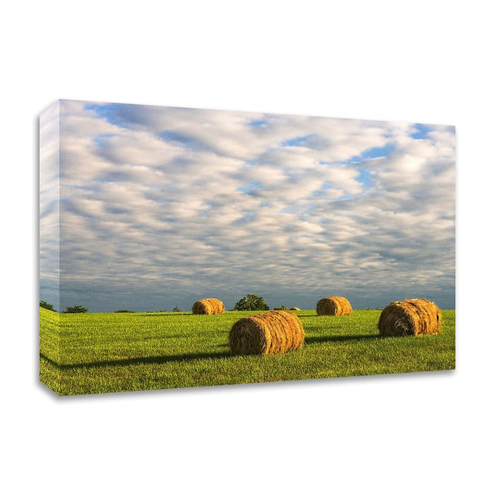 Approaching Storm - Haystacks by David Hammond Wrapped Canvas Wall Art