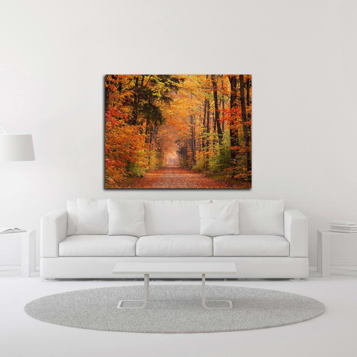Autumn Road by David Hammond Wrapped Canvas Wall Art