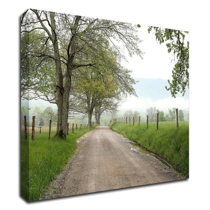 Sparks Lane by David Hammond Wrapped Canvas Wall Art