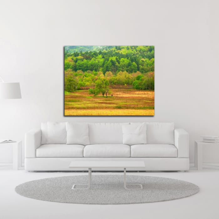 Spring Trees by David Hammond Wrapped Canvas Wall Art