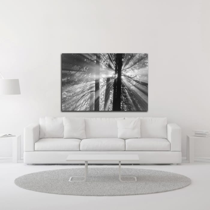 Rays by Tim Oldford Wrapped Canvas Wall Art