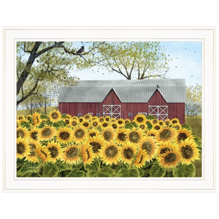 Sunshine by Billy Jacobs Framed Wall Art