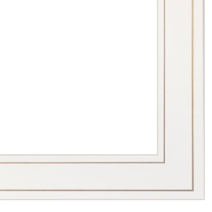 Transitional Blooms II By Stellar Design Studio Framed Wall Art