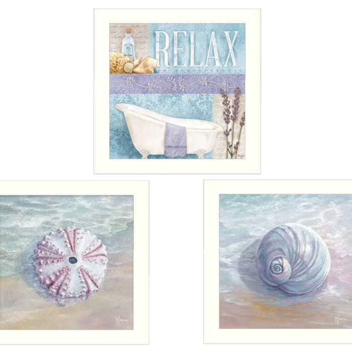 Shells I Collection By Mollie B. and G. Janisse Framed Wall Art