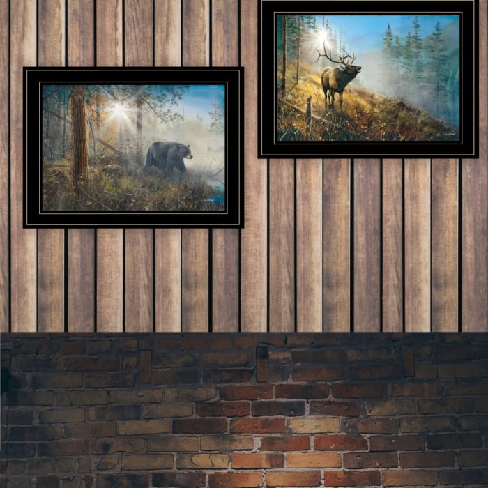 Song & Shadow in the Mist Collection By Jim Hansen Framed Wall Art