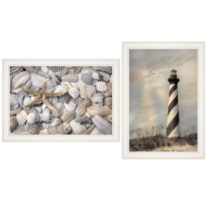 Cape Hatteras Lighthouse and Sea Shells Collection By Lori Deite Framed Wall Art