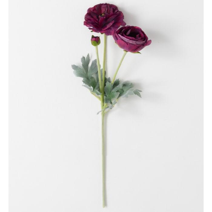 Real Garden Ranunculus Stem