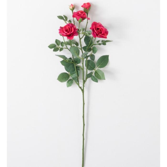Real Garden Rose Stem