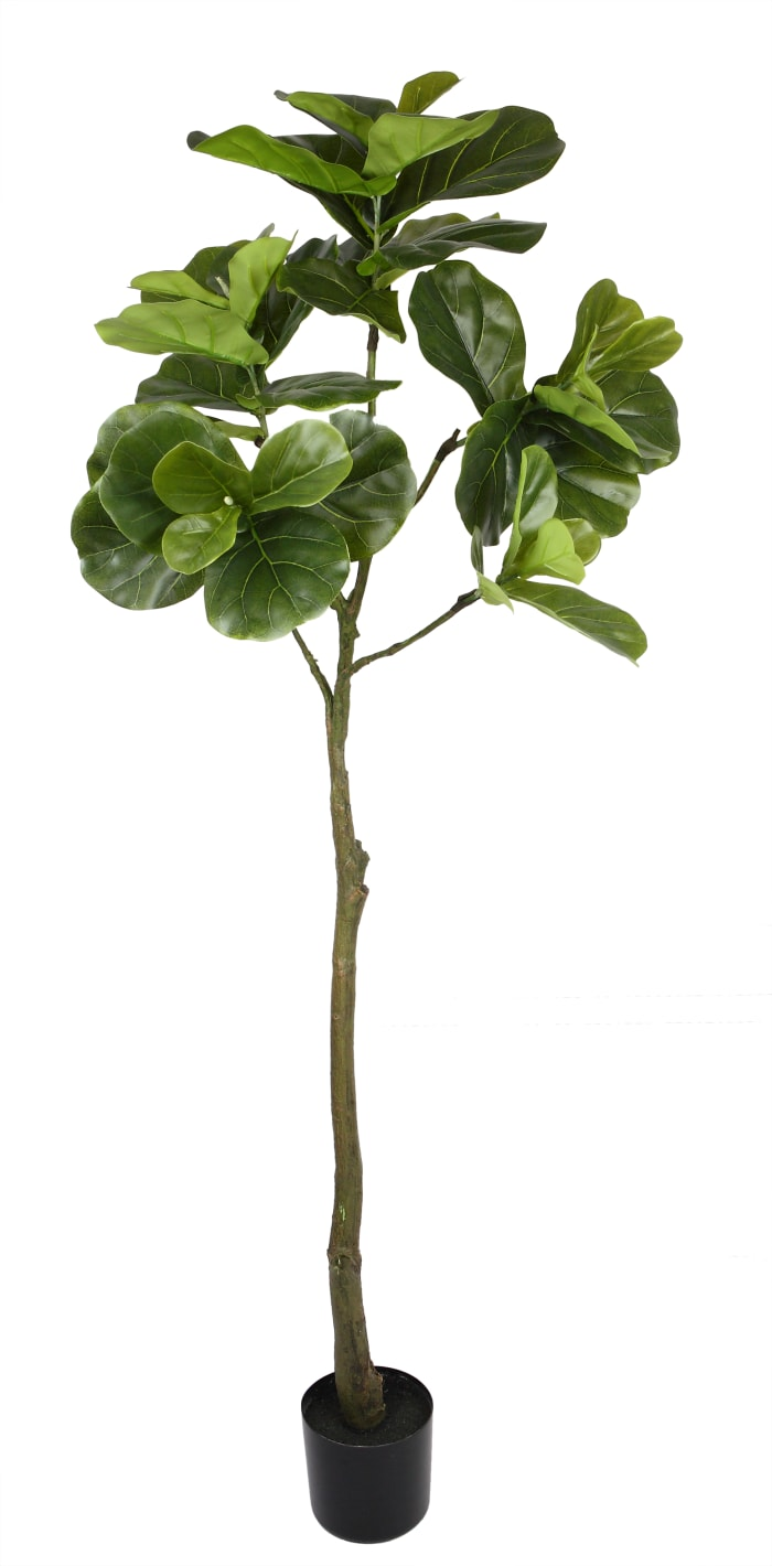 Fiddle Leaf Fig Single Trunk Faux Tree