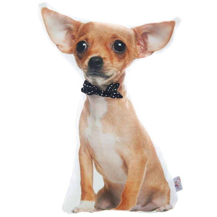 Peruvian Hairless Dog Decorative Throw Pillow