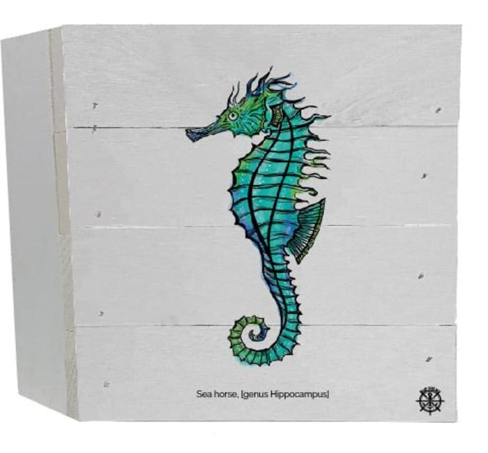 SEAHORSE With SCIENTIFIC NAME Wall Accent